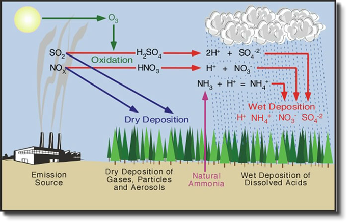 how acid rain forms and it devastating effects in the ecosystem