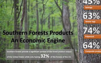 Southern Forest Products – An Economic Engine Story Map