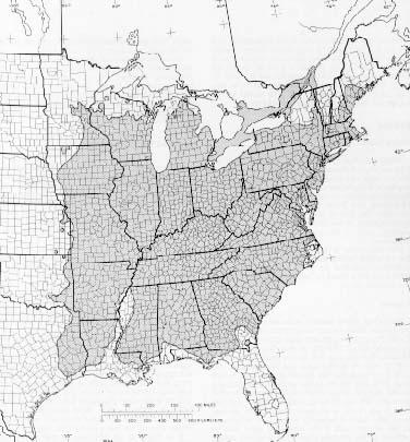 {The native range of Quercus alba}