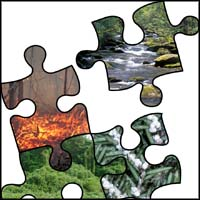Comparative Risk Assessment Framework and Tools