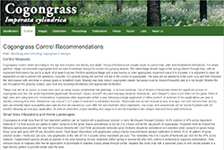 Identifying and Controlling Cogongrass in Georgia - Control Measures